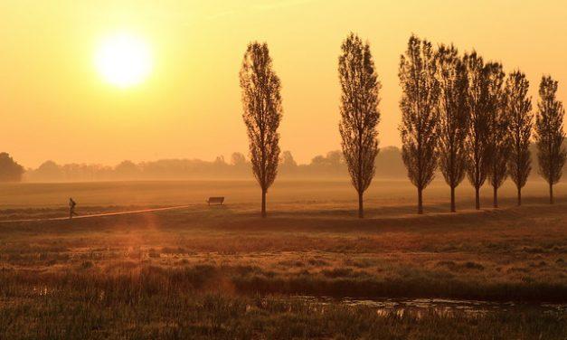 Landschap Overijssel twee nieuwe leden RvT