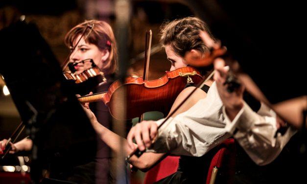 Orkest van het Oosten / Het Gelders Orkest zoekt voorzitter RvT