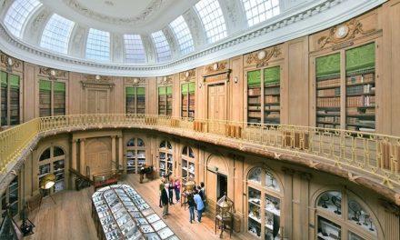 Teylers Museum zoekt nieuwe voorzitter RvT